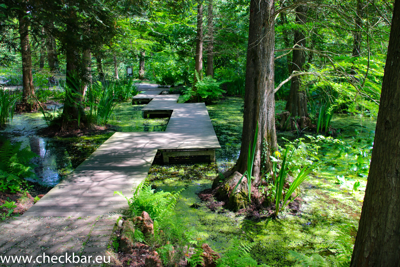 Botanischer Garten der Ruhr-Universität Bochum